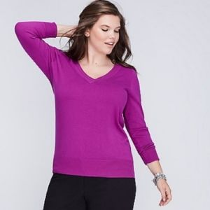 LANE BRYANT v neck fitted lightweight sweater